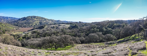 New A Zone Ranch Lease (Napa County, California)