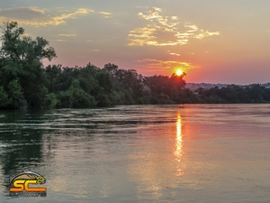 The Beauty of the Sacramento River Headed North Below Cottonwood Creek in August